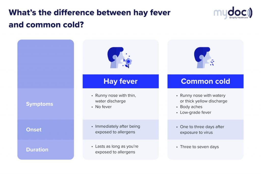 Infographic on the difference between hay fever and the common cold