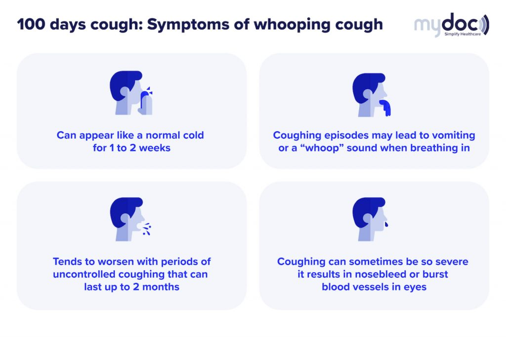 Infographic on the symptoms of the 100 days cough, otherwise known as the whooping cough